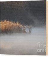 Fog Lifting Wood Print
