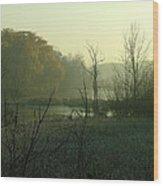 Fog On The Pond Wood Print
