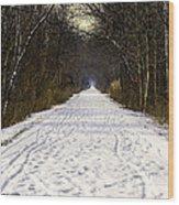 Fog On The Winter Macomb Orchard Trail Wood Print