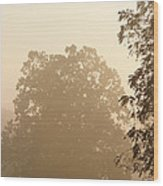 Fog Over Countryside Wood Print by Olivier Le Queinec