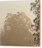 Fog Over Countryside Wood Print