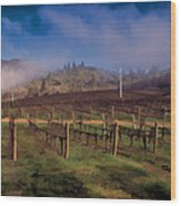 Fog Over Del Rio Wood Print