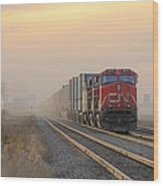 Fog Train In Winnipeg Manitoba Wood Print