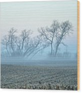 Fog Warriors Wood Print