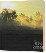 Fogged Up Sun Wood Print