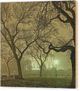 Foggy Approach To The Lincoln Memorial Wood Print