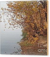 Foggy Autumn Riverbank Wood Print