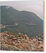 Foggy Day Road Through Cape Breton Highlands Np-ns Wood Print