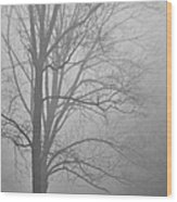 Foggy Days Wood Print