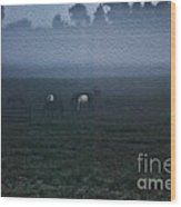 Foggy Dew Wood Print