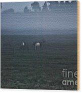Foggy Dew Wood Print