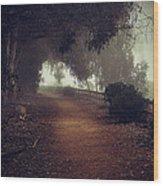 Foggy Dreams Wood Print