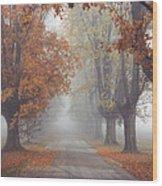 Foggy Driveway Wood Print by Wendell Thompson