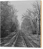 Foggy Ending In Black And White Wood Print