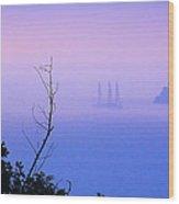 Foggy Evening In Portofino Wood Print