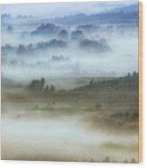 Foggy Flatlands - Blue Ridge Parkway Wood Print
