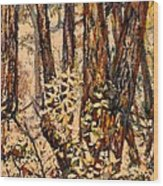 Foggy Forest Edge Wood Print