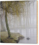 Foggy Lake Morning Wood Print