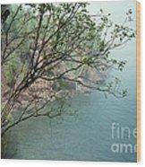 Foggy Lake Superior Wood Print