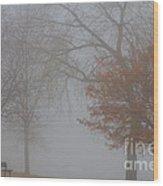 Foggy Lake View Wood Print