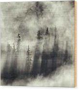 Foggy Landscape Stephens Passage Wood Print