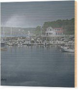 Foggy Coast Of Maine Wood Print