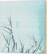 Foggy  Marsh Mornng Wood Print
