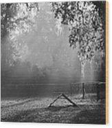 Foggy Morn At Dog Park Wood Print