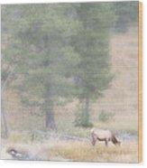 Foggy Morning Elk Wood Print
