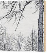 Foggy Morning Landscape - Fractalius 6 Wood Print