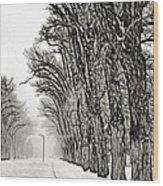 Foggy Morning Landscape - Fractalius 7 Wood Print by Steve Ohlsen