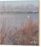 Foggy Morning On The Sacramento River Wood Print
