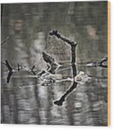 Foggy Morning Pondscape Wood Print