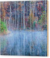 Foggy Morning Reflections Wood Print