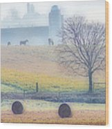 Foggy Morning Wood Print by Thomas  MacPherson Jr
