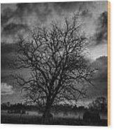 Foggy Mornings Wood Print
