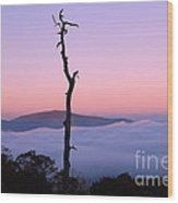 Foggy Mountain Morning Wood Print