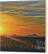 Foggy Ohio Morning Wood Print