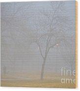 Foggy Park Morning Wood Print
