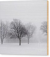 Foggy Park With Winter Trees Wood Print