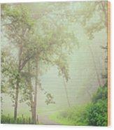 Foggy Path - Blue Ridge Parkway Wood Print