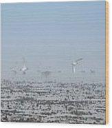 Foggy Seabirds Parksville Beach Wood Print