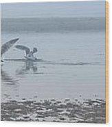 Foggy Seabirds Low Tide Buffet Wood Print