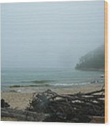 Foggy Shoreline Wood Print