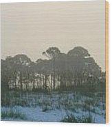 Foggy Sunny Florida Sunrise Wood Print