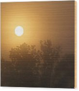 Foggy Sunrise 6 Wood Print