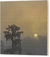 Foggy Sunrise II Wood Print