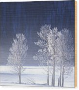 Foggy Sunrise In Yellowstone National Park Wood Print