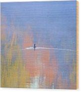 Foggy Swim Wood Print