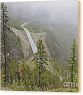 Foggy View From Icefields Parkway Wood Print